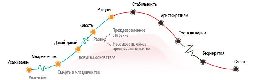 Тест на определение жизненного цикла компании